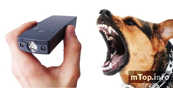 Рейтинг ультразвуковых отпугивателей собак