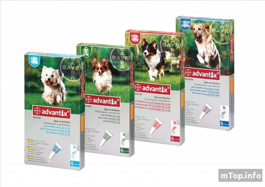 Лучшие средства от клещей для собак — ТОП-5